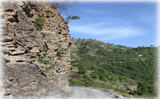 Places to visit near Chali, Shimla