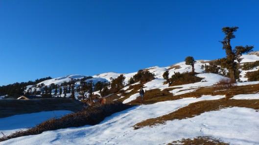 Trek to Kedar Kantha Peak in Garhwal Himalaya