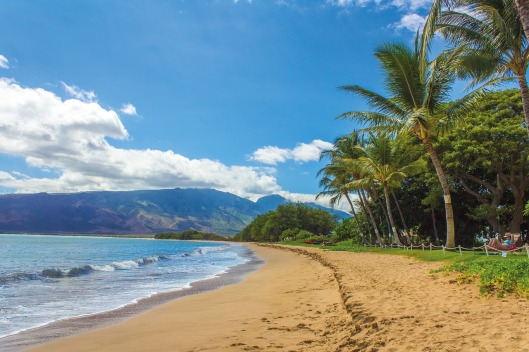 find the best beaches in Hawaii